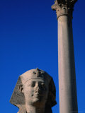 Granite Column of Pompey's Pillar - Alexandria  Egypt