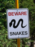 Snake Sign at Museum of Modern Art in Heidi  Melbourne  Australia