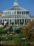 Palm House or Palmehus  Greenhouse in the Botanic Gardens  Copenhagen  Denmark