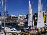 Yachts Moored in Rostock Marina  Rostock  Germany