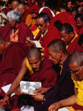 Monks Reading Sacred Text During Puja (Prayers) at Mahabodhi Temple  Bodhgaya  Bihar  India