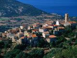 Hillside Village  Aregno  Corsica  France