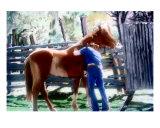 061907 Louisiana Cowboy