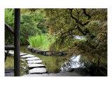Japanese Garden Stone Path