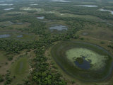 Aerial View of the Wetlands of the Pantanal Region