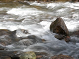 Whitewater Rushes Over Rocks in a River in Montana