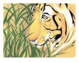 Tiger Traveler
