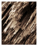 0004B Abstract Wood Photography