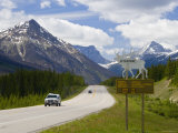 Road  Yoho National Park  British Columbia  Canada