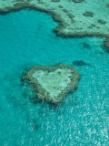 Australia  Queensland  Whitsunday Coast  Great Barrier Reef  Heart Reef  Aerial View