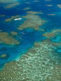 Australia  Queensland  North Coast  Cairns Area  Great Barrier Reef  Aerial View of Moore Reef