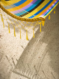 Hammock on Beach  Caye Caulker  Belize