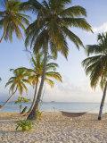 Panama  Comarca de Kuna Yala  San Blas Islands  Kuanidup Grande  Tropical Beach