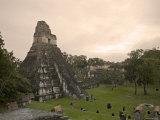 Tikal Pyramid Ruins  Guatemala