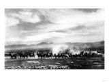 Death Valley  California - View of a Twenty Mule Borax Team