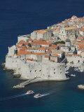 Croatia  Southern Dalmatia  Dubrovnik  Old Town