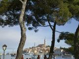 Croatia  Istria  Rovinj  Harbour and Cathedral of St Euphemia