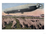 Germany - View of a Zeppelin Blimp over Grazing Sheep