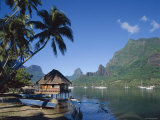 Cook's Bay  Moorea  French Polynesia  South Pacific  Tahiti
