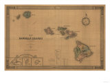 Hawaii - Panoramic State Map