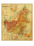 Borneo - Panoramic Map