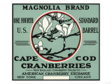 Cape Cod  Massachusetts - Magnolia Brand Cranberry Label