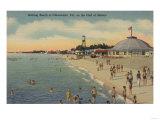 Clearwater  FL - Swimmers & Sunbathers on Beach