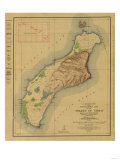 Hawaii - Panoramic Niihau Island Map