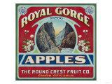 Canon City  Colorado - Royal Gorge Apple Label