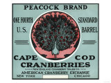 Cape Cod  Massachusetts - Peacock Brand Cranberry Label