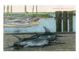 Block Island  Rhode Island - View of Two Swordfish