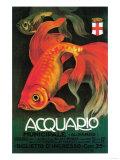 Italy - Aquarium & Municipal Park Promotional Poster
