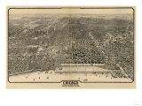 Chicago  Illinois - Panoramic Map No 1