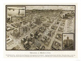 Houston  Texas - Panoramic Map