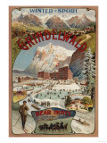 Grindelwald  Switzerland - View of the Bear Hotel Promotional Poster