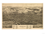 Findlay  Ohio - Panoramic Map