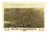 Buffalo  New York - Panoramic Map