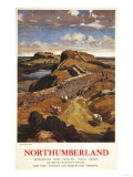 Northumberland  England - Hadrian's Wall and Sheep British Rail Poster