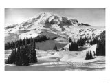 Rainier National Park - Early Spring in Paradise Valley Photograph
