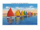 Nantucket  Massachusetts - View of the Rainbow Sailboat Fleet