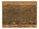 New Haven  Connecticut - Panoramic Map