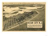 Ocean City  New Jersey - Panoramic Map