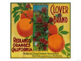 Clover Orange Label - Redlands  CA