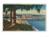 Casino and Pier  Santa Cruz - Santa Cruz  CA