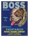 Boss Vegetable Label - Salinas  CA