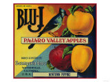 Blu-J Apple Crate Label - Watsonville  CA