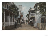St Augustine  Florida - View of St George St No1