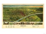 Waco  Texas - Panoramic Map
