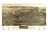 Saratoga Springs  New York - Panoramic Map