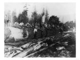 Group of Lumberjacks on Large Log Photograph - Cascades  WA